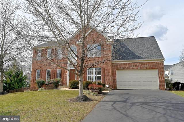 3 Palladio Drive, STAFFORD, VA 22554 (#VAST229048) :: AJ Team Realty