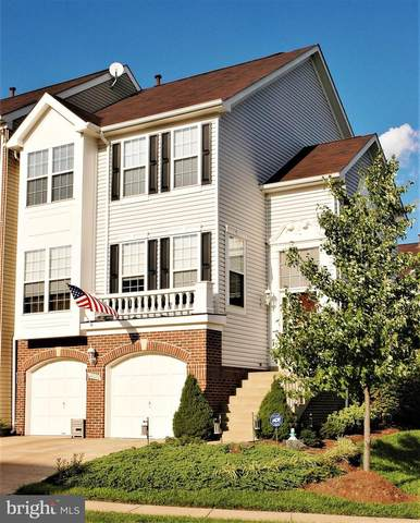 44042 Rising Sun Terrace, ASHBURN, VA 20147 (#VALO430322) :: Colgan Real Estate