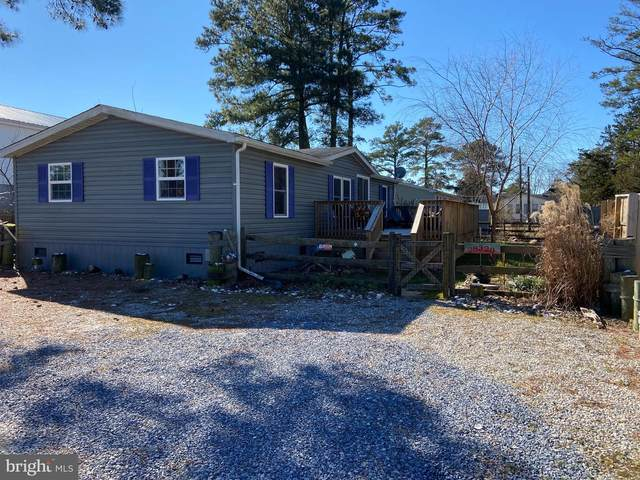 28320 Forest Drive, MILLSBORO, DE 19966 (#DESU177080) :: The Matt Lenza Real Estate Team