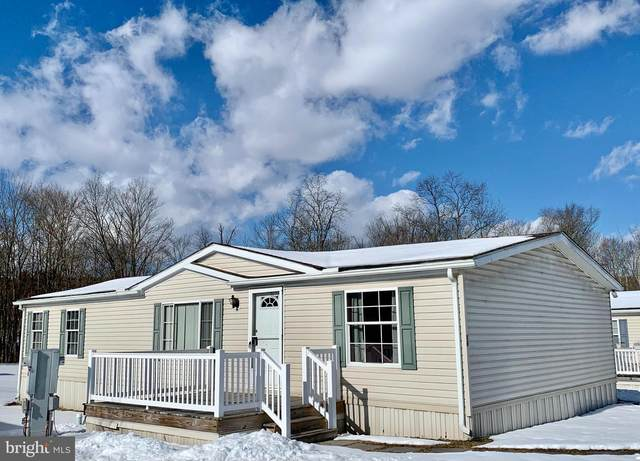 16 Meadowview Drive, NEW BLOOMFIELD, PA 17068 (#PAPY103066) :: Flinchbaugh & Associates