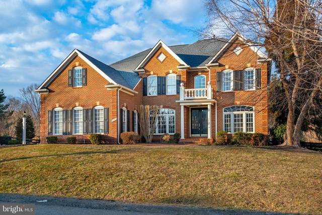 40994 Misty Vale Circle, ALDIE, VA 20105 (#VALO430428) :: AJ Team Realty