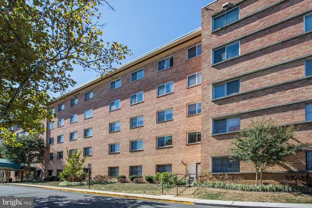 750 S Dickerson Street #201, ARLINGTON, VA 22204 (#VAAR176140) :: Dart Homes