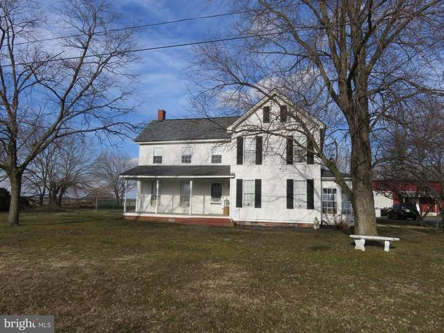 23648 Shore Highway, RIDGELY, MD 21660 (#MDCM125100) :: RE/MAX Coast and Country