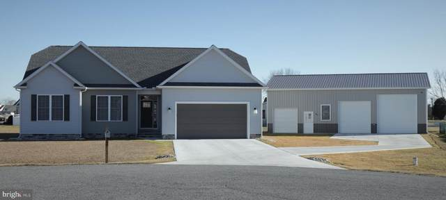 110 Kings Court, HARRINGTON, DE 19952 (#DEKT246412) :: REMAX Horizons