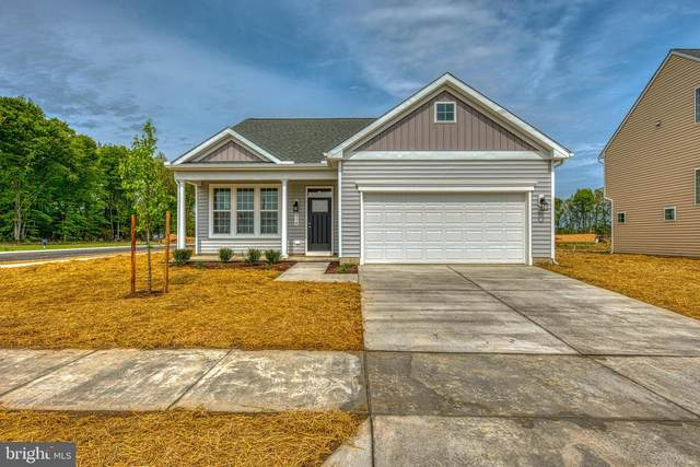 320 Morning Glory Drive, DENTON, MD 21629 (MLS #MDCM125106) :: Maryland Shore Living | Benson & Mangold Real Estate