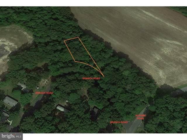 Branch Road, MILLSBORO, DE 19966 (#DESU177474) :: Loft Realty