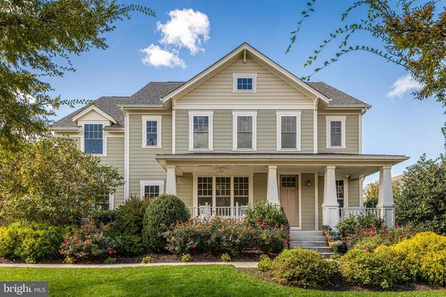 24895 Quimby Oaks Place, ALDIE, VA 20105 (#VALO430730) :: Pearson Smith Realty