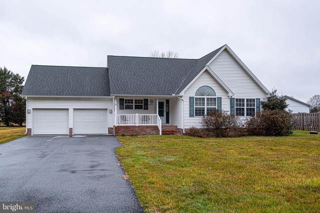 11256 Stewart Neck Road, PRINCESS ANNE, MD 21853 (#MDSO104418) :: Atlantic Shores Sotheby's International Realty