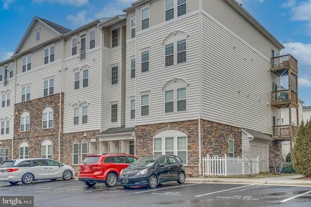 42245 San Juan Terrace #300, ALDIE, VA 20105 (#VALO430750) :: Colgan Real Estate