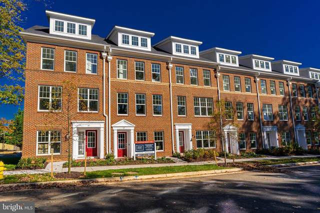 43 N Trenton Street, ARLINGTON, VA 22203 (#VAAR176318) :: City Smart Living