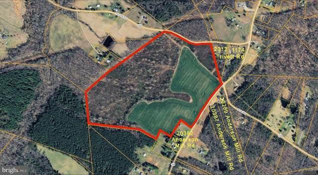 Anderson Mill, BEAVERDAM, VA 23015 (#VACV123646) :: Crews Real Estate