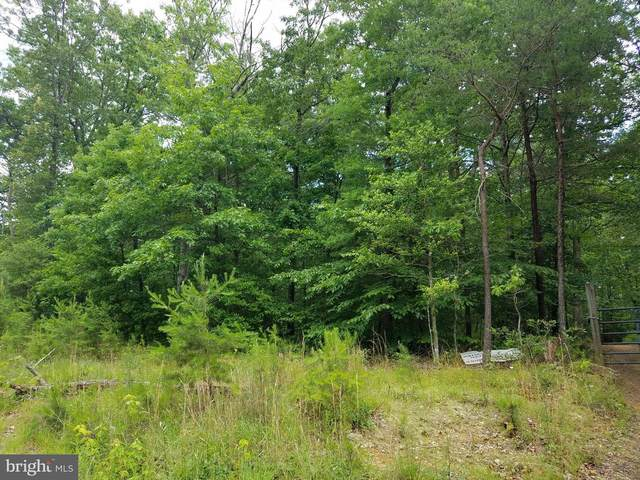 5430 Winston Vines Place, INDIAN HEAD, MD 20640 (#MDCH221876) :: Tom & Cindy and Associates