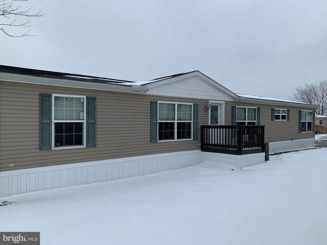 49 Raptor Drive, HANOVER, PA 17331 (#PAAD114910) :: The Joy Daniels Real Estate Group