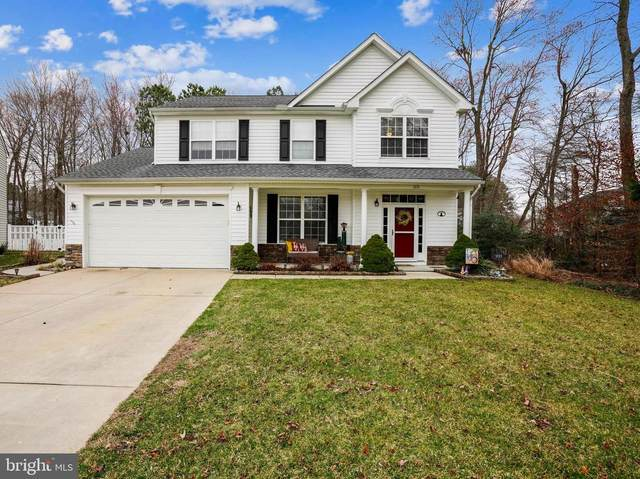 1111 Ruddy Duck Court, DENTON, MD 21629 (#MDCM125118) :: Realty One Group Performance