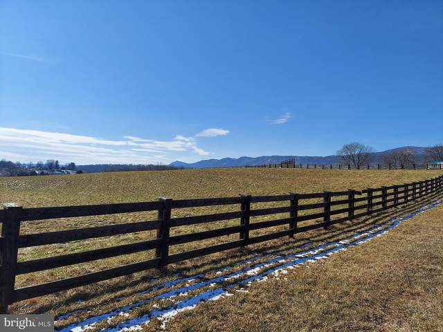 shared driveway of 1 Rt 340, SHENANDOAH, VA 22849 (#VAPA105946) :: AJ Team Realty