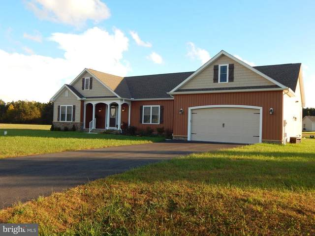 24585 Hollytree Circle, GEORGETOWN, DE 19947 (#DESU177636) :: Barrows and Associates