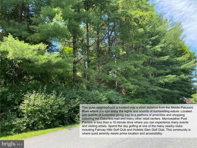 Lot 5 Corina Court, COLUMBIA, MD 21044 (#MDHW290578) :: EXIT Realty Enterprises
