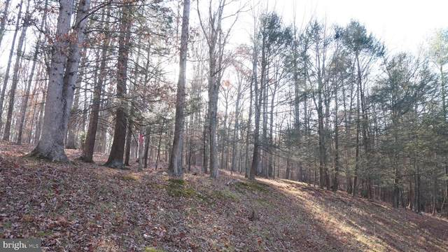 Lot 24 Amberwood Lane, GREAT CACAPON, WV 25422 (#WVMO118042) :: EXIT Realty Enterprises
