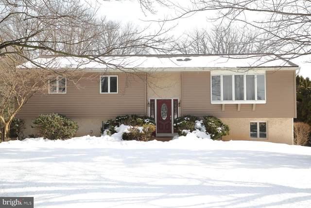 6 Muddy Creek Church Road, DENVER, PA 17517 (#PALA177422) :: The Craig Hartranft Team, Berkshire Hathaway Homesale Realty