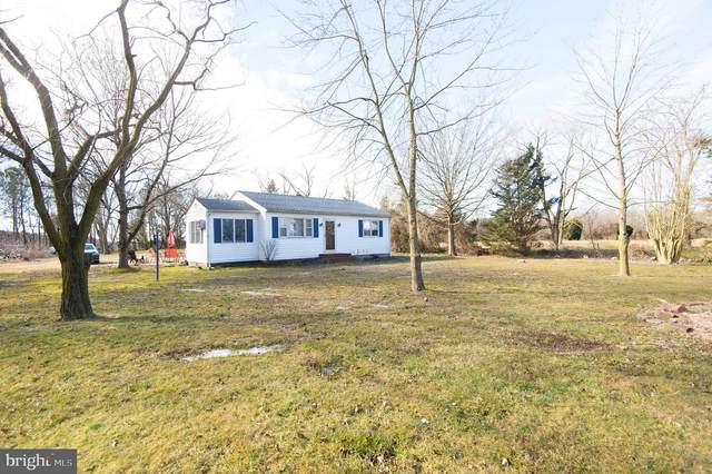 3540 Chateau Drive, CAMBRIDGE, MD 21613 (#MDDO126902) :: Jennifer Mack Properties
