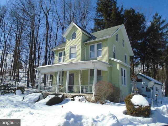 44 E Pheasant Run Road, ORWIGSBURG, PA 17961 (#PASK134244) :: The Joy Daniels Real Estate Group
