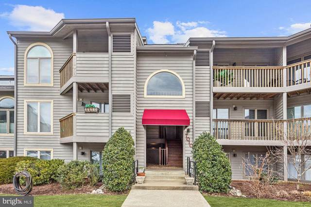 7010 Channel Village Court #201, ANNAPOLIS, MD 21403 (#MDAA459562) :: ExecuHome Realty
