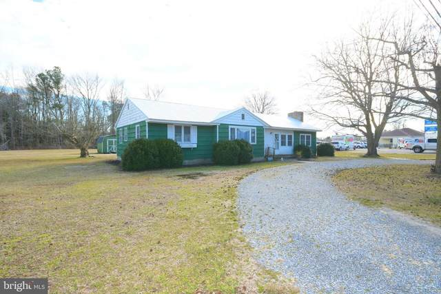 30050 Vines Creek Road, DAGSBORO, DE 19939 (#DESU177790) :: CoastLine Realty