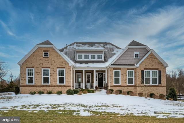 41959 Briarberry Place, LEESBURG, VA 20176 (#VALO431120) :: The Lutkins Group