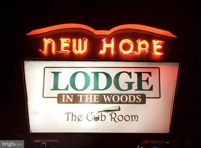 400 W Bridge Street, NEW HOPE, PA 18938 (#PABU520806) :: LoCoMusings