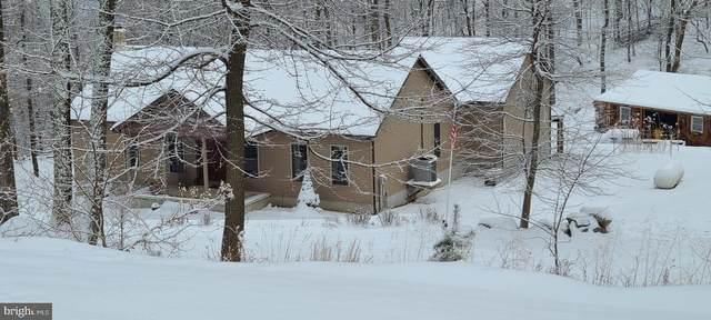1804 Bear Ridge, NEW CREEK, WV 26743 (#WVMI111730) :: AJ Team Realty