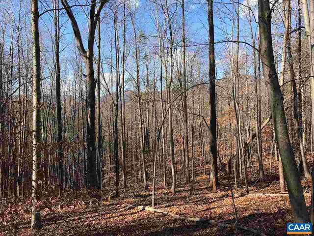 Dogwood Lane #41, NELLYSFORD, VA 22958 (#598236) :: ExecuHome Realty