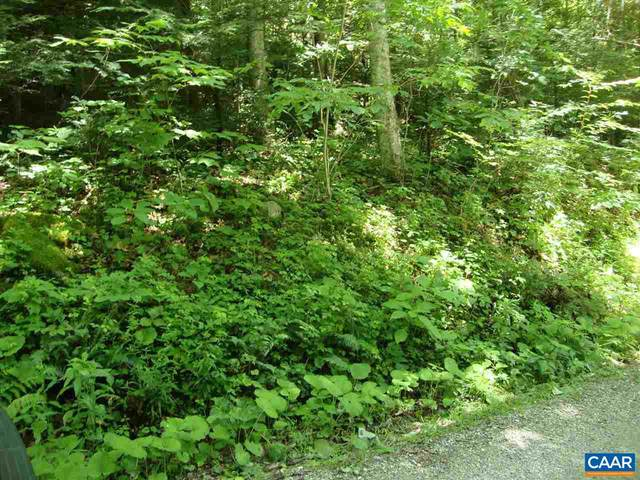 Zinks Mill School Road, MONTEBELLO, VA 24464 (#564867) :: Great Falls Great Homes