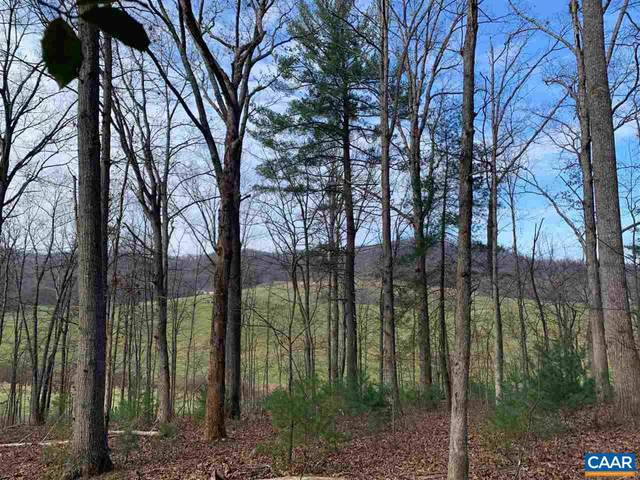 D-01 Winsome Orchard Ln, NORTH GARDEN, VA 22959 (#611258) :: The Sky Group