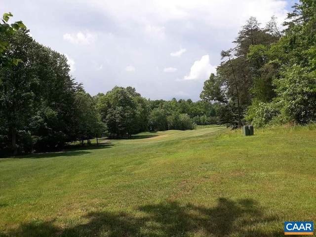 914 Stoney Creek E I G Lot  39, NELLYSFORD, VA 22958 (#591556) :: The Matt Lenza Real Estate Team