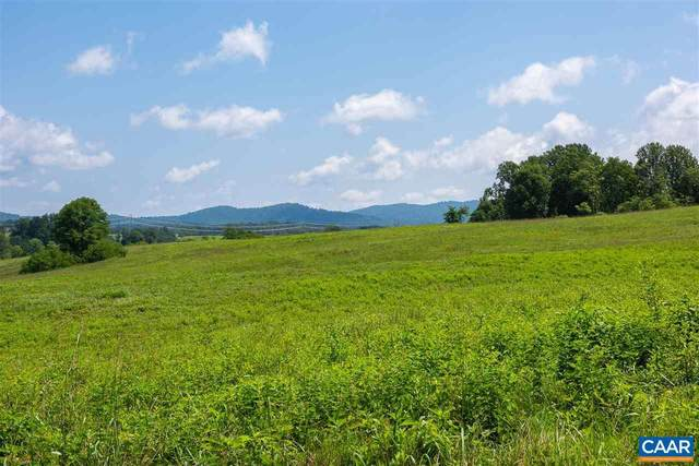 D-2 Winsome Orchard Ln, NORTH GARDEN, VA 22959 (#607578) :: The Sky Group