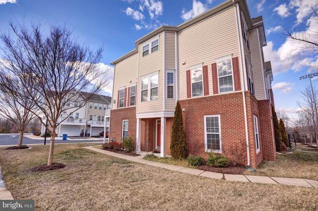 22650 Wispy Green Terrace, BRAMBLETON, VA 20148 (#VALO431170) :: Jennifer Mack Properties