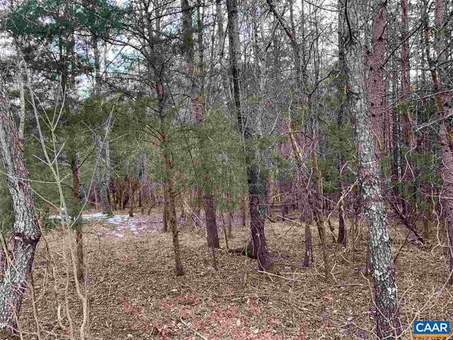 Satinwood Lane, NELLYSFORD, VA 22958 (#613292) :: ExecuHome Realty