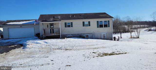 394 Falling Springs Road, LANDISBURG, PA 17040 (#PAPY103096) :: TeamPete Realty Services, Inc
