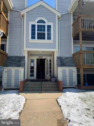 6607 Rapid Water Way #301, GLEN BURNIE, MD 21060 (#MDAA459712) :: Colgan Real Estate