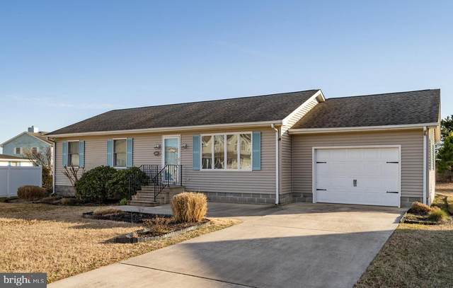 38067 Beach Tree Court, SELBYVILLE, DE 19975 (#DESU177874) :: Barrows and Associates