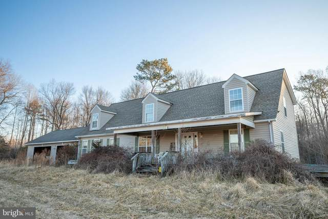 30047 Bridle Path Lane, MILTON, DE 19968 (#DESU177882) :: RE/MAX Coast and Country