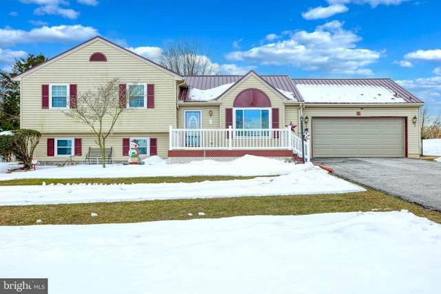 19 Ewell Drive, EAST BERLIN, PA 17316 (#PAAD114996) :: The Matt Lenza Real Estate Team