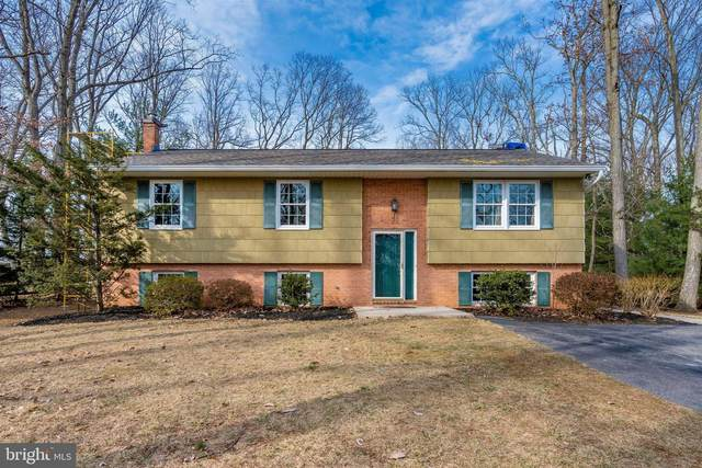 2908 Timber Ridge Drive, MOUNT AIRY, MD 21771 (#MDCR202630) :: Bob Lucido Team of Keller Williams Lucido Agency