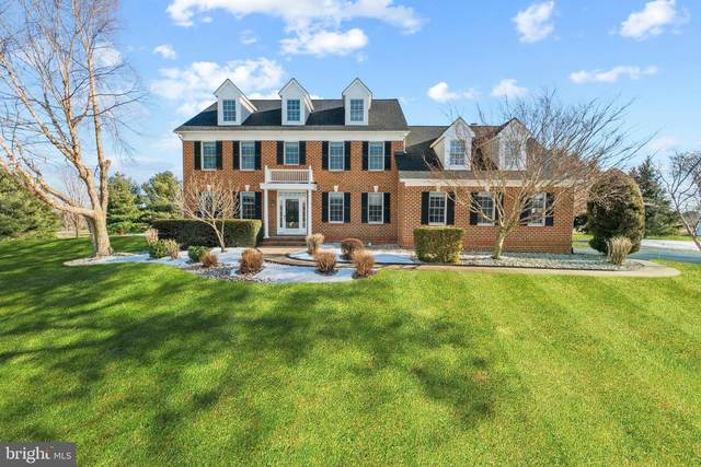 14600 Grange Drive, PURCELLVILLE, VA 20132 (#VALO431234) :: Peter Knapp Realty Group