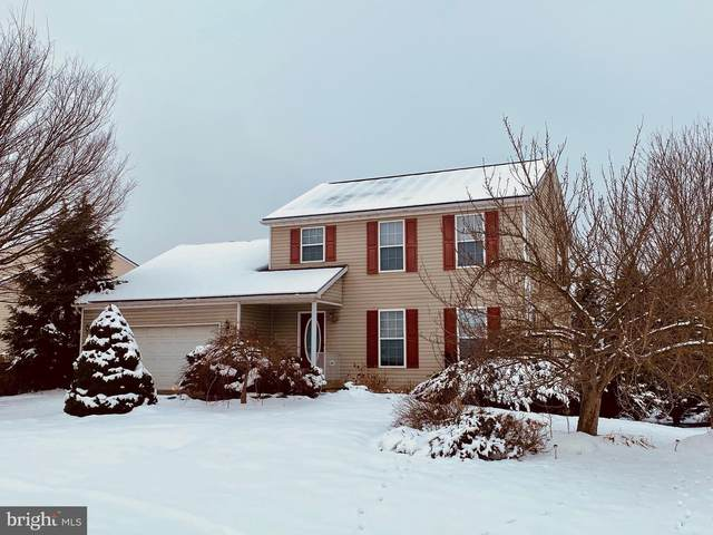 10 Shoal Creek Court, MARTINSBURG, WV 25405 (#WVBE183814) :: Potomac Prestige