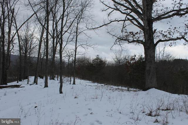 LOT 16 Silver Gap View, ROMNEY, WV 26757 (#WVHS115288) :: AJ Team Realty
