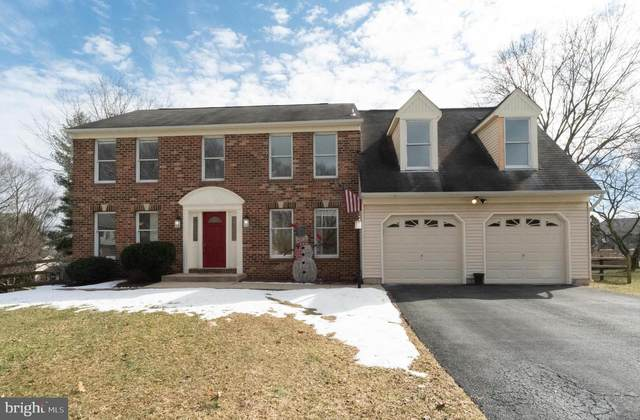 10228 Queens Camel Court, ELLICOTT CITY, MD 21042 (#MDHW290742) :: Corner House Realty
