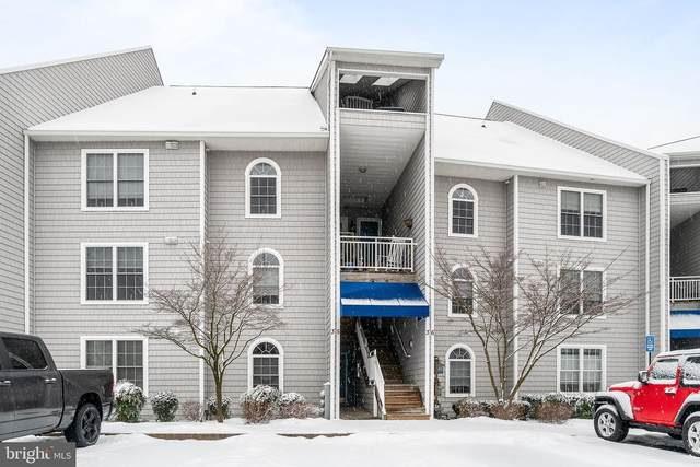 35 Owens Landing Court 35B, PERRYVILLE, MD 21903 (#MDCC173420) :: CENTURY 21 Core Partners