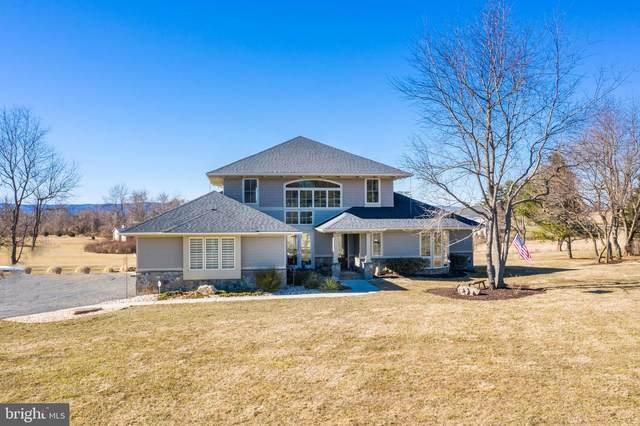 16557 Clarkes Gap Road, PAEONIAN SPRINGS, VA 20129 (#VALO431312) :: The Riffle Group of Keller Williams Select Realtors
