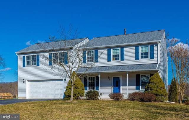 24713 Nickelby Drive, DAMASCUS, MD 20872 (#MDMC745318) :: The Gold Standard Group